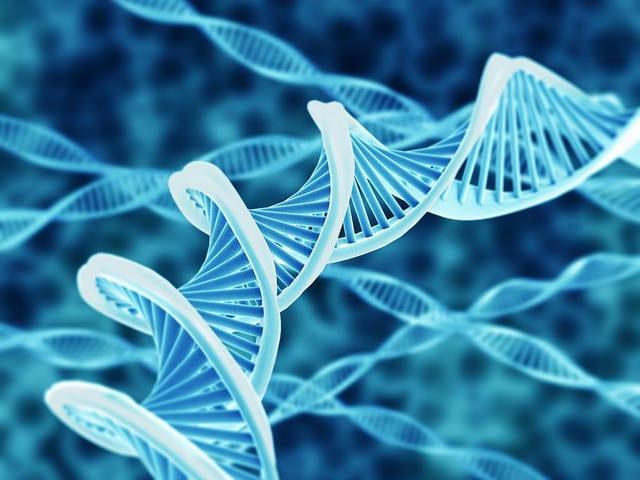 biotech stocks roku
