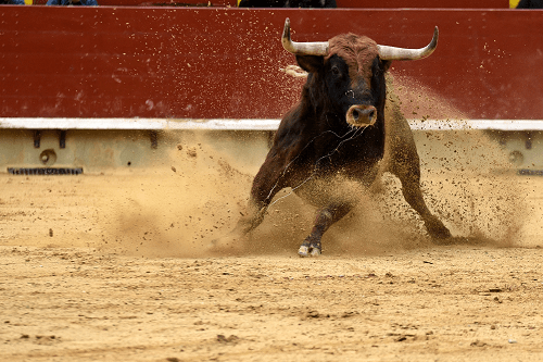 6 Monster Reasons Why Stocks May Reach New All-Time Highs in 2019