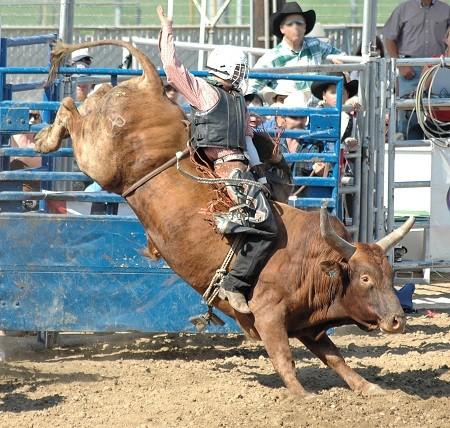 Bring Back The Bull As Stocks Reach New Highs On November 7
